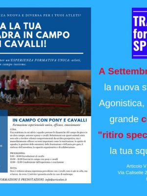 Training for Sport-Porta la Tua Squadra in campo con il cavallo !